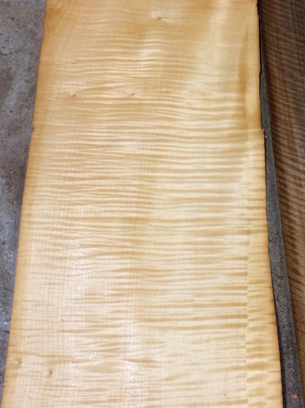 Tiger Maple veneer